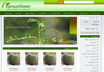 طراحی سایت ایران سان فلاور
