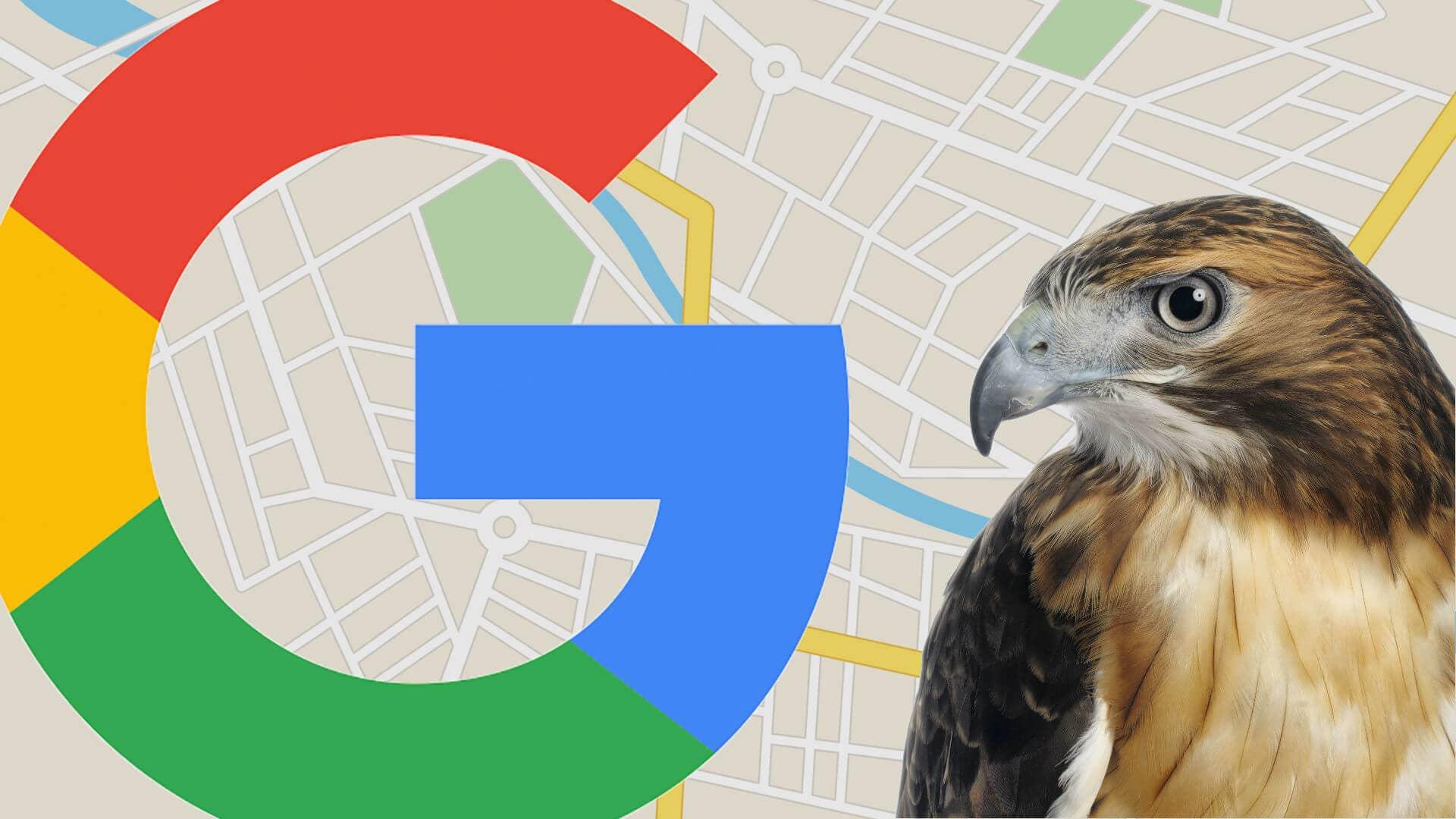 گوگل الگوریتم هاوک را عرضه نمود