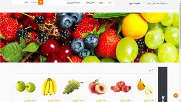 طراحی فروشگاه اینترنتی هالا